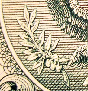 Olive Branch on Great Seal
